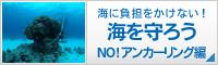 海を守ろう! NO!アンカーリング編