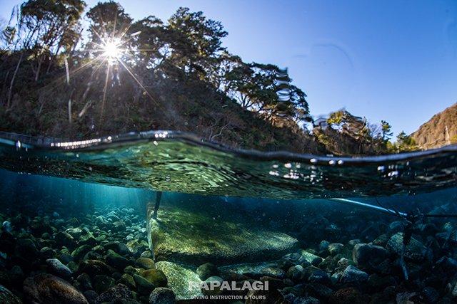 ヨコバマ浅場の光