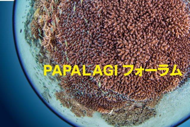 パパラギフォーラム2022