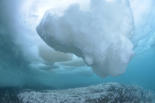 世界自然遺産 知床流氷