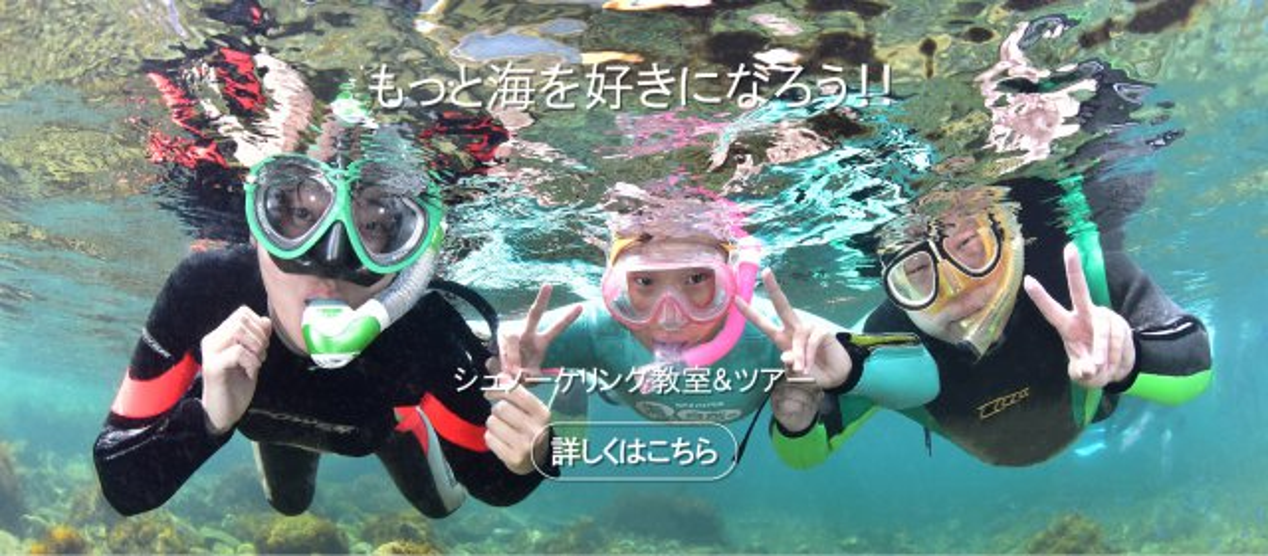 """NPO パパラギ""""海と自然の教室""""公式HPへ"""