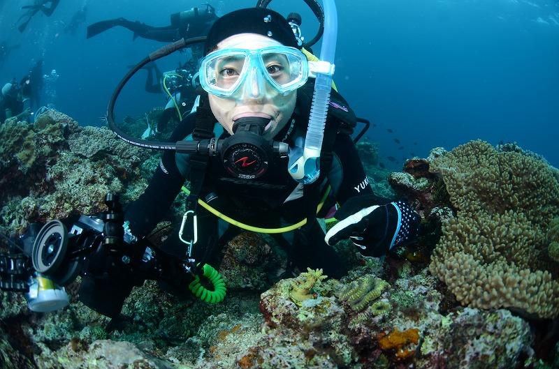 11月7日~9日 沖縄・サンゴ移植ツアー