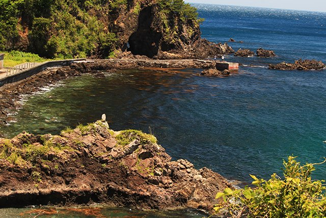 川奈港横の自然が残る海岸線