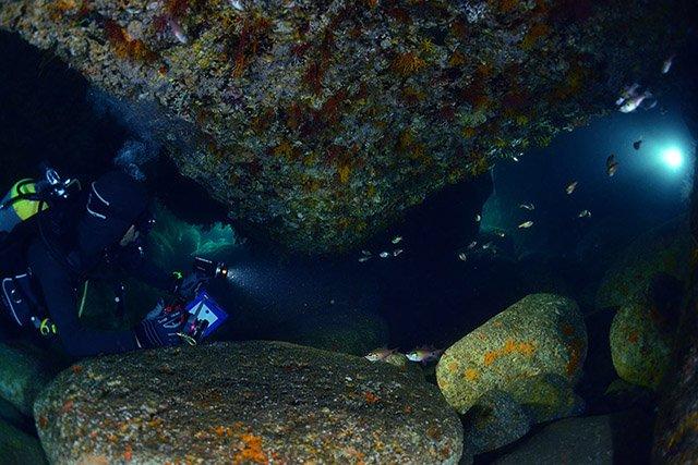 ワクワクする洞窟の中