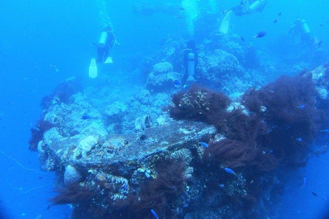 沈船とダイバー