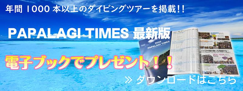PAPALAGI TIMESダウンロードはこちら