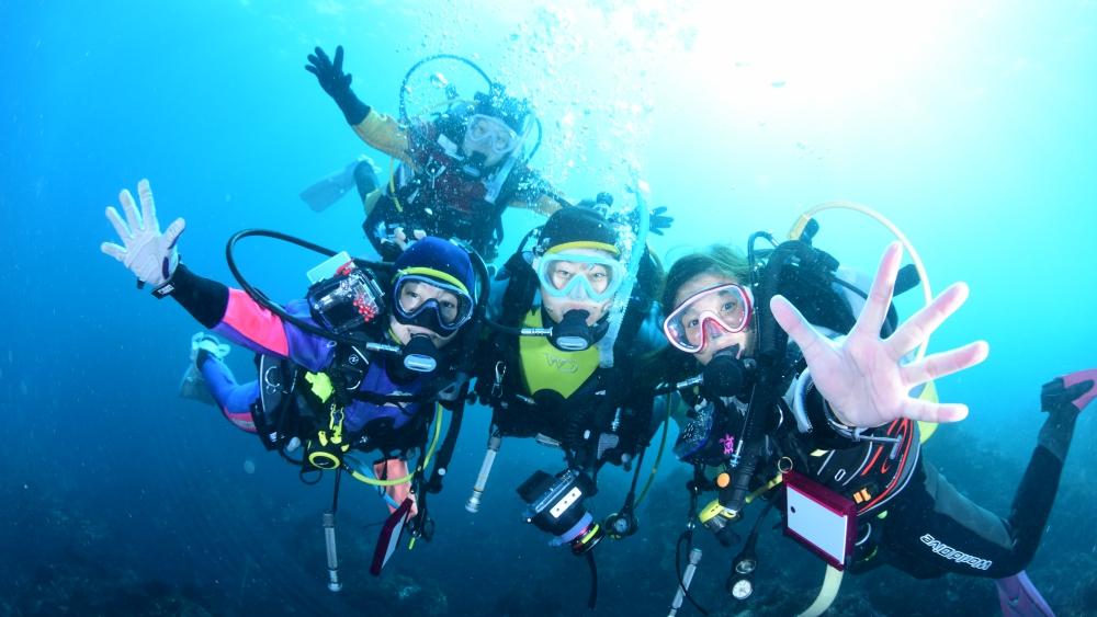 伊豆の海はダイビングのメッカ