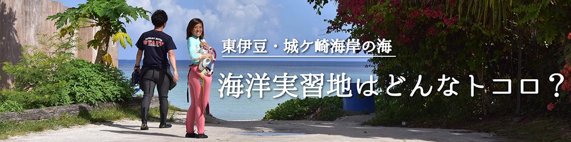 海洋実習地はどんなトコロ?はこちら