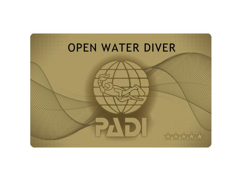 PADIゴールドカードと通常のカード