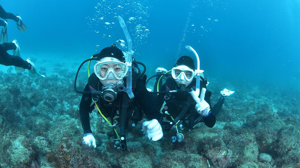 海で体験ダイビング