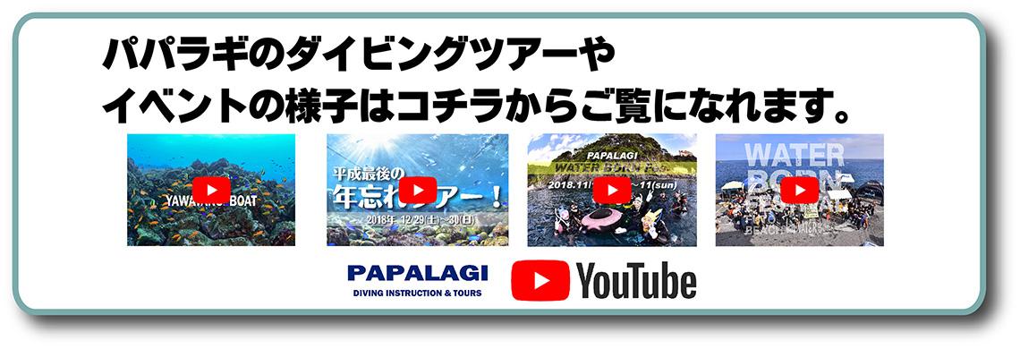パパラギのダイビングツアーやイベントツアー!